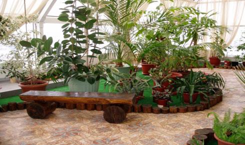 Преимущества устройства зимнего сада в доме
