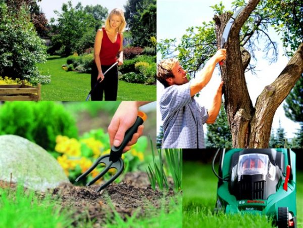 Уход за садом и защита от вредителей