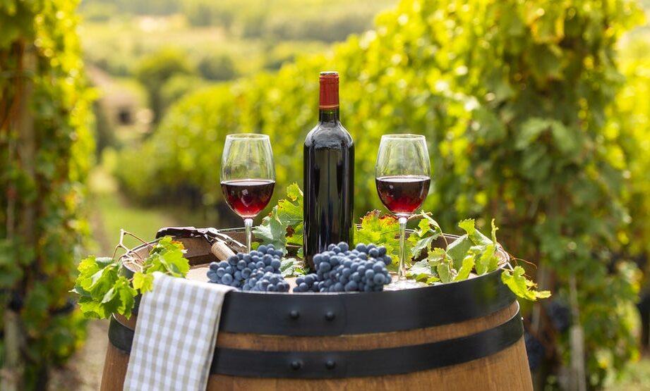 как выбрать недорогое вино высокого качества